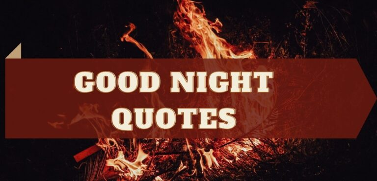 Good night quotes for your partner